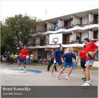 kamelija9