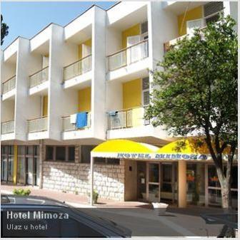 mimoza3 sko turističko preduzeće - mimoza, Tivat