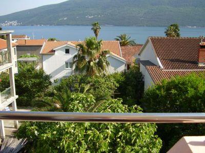 pogled sa terase stana i sobe mitrović - djenovici
