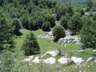 dsc07212 national park lovćen - extra estate with two ruin, Cetinje
