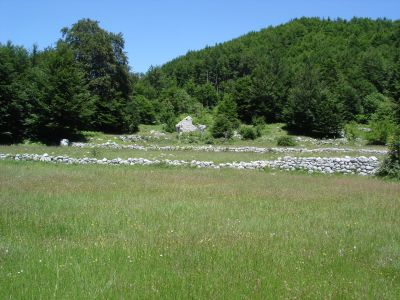 dsc07217 national park lovćen - extra estate with two ruin, Cetinje