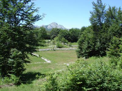 dsc07227 national park lovćen - extra estate with two ruin, Cetinje