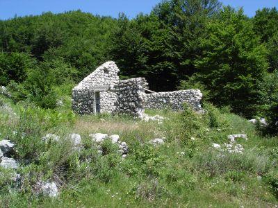 dsc07229 nacionalni park lovćen - extra imanje sa dva kućišta, Cetinje