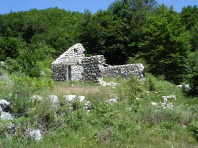 dsc07229 national park lovćen - extra estate with two ruin, Cetinje