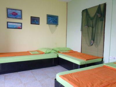 tri kreveta zeleni Čolpa, Herceg Novi