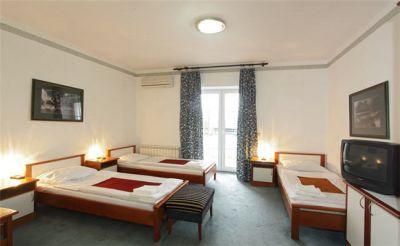 hotel_palace_zelenik_13