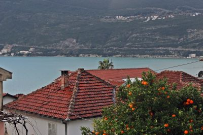 sea_view_apartments_pax_herceg_novi_montenegro