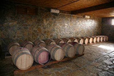 6 1 i vinarija milović, Ulcinj