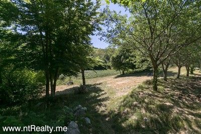 grahovo farm house (4) kotor - grahovo, countryside small farm house with big plot in trifkov do  €50,000
