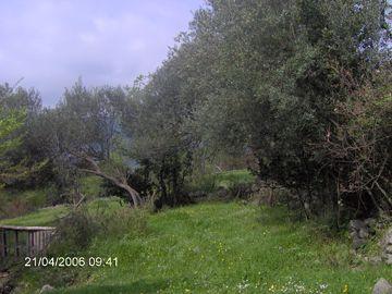 im000232 mediteransko seosko imanje, Herceg Novi