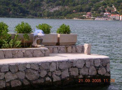 1 corovic s, Kotor
