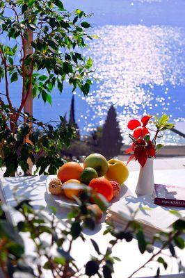 fruits queen of montenegro