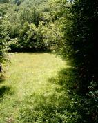 gnjijevido_livada2_4 imanje u gnjijevom dolu kod cetinja, Cetinje