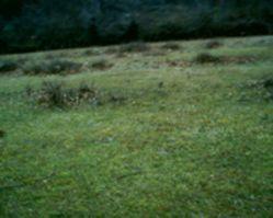 kameno_photo3_3 plac u kamenom kod herceg novog, Herceg Novi