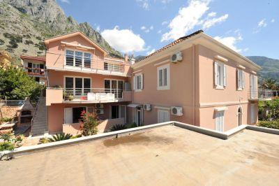 30839971 marilu s, Kotor