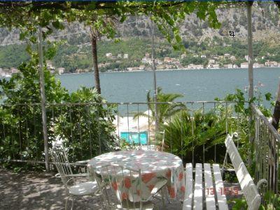a1 marilu s, Kotor